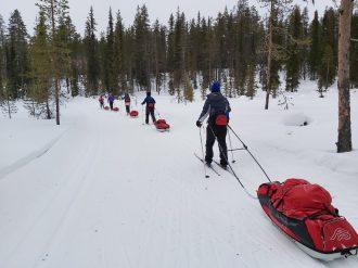 arctic ski