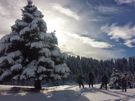 snow shoe rental routes